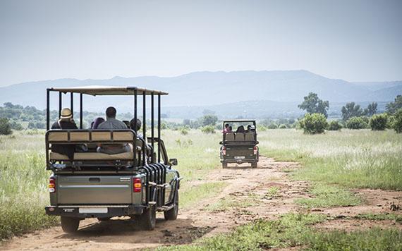 Guvon excursions & activities
