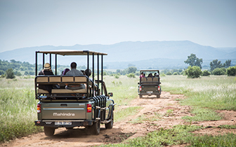 Activities - Game Drives